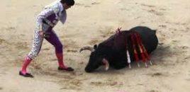 Las corridas de toros: una mala escuela para los niños