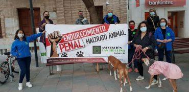 Emotivo acto en Catarroja (Valencia) por los animales.