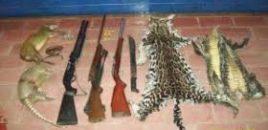 Colombia prohíbe la caza deportiva por considerarla maltrato