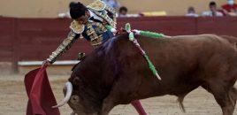 Máxima repercusión en la prensa internacional de la primera corrida de toros celebrada en Ávila