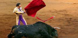 Covid-19: el ministro español de Cultura promete ayudas al sector taurino