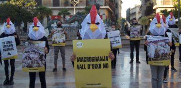Ecologistas se concentran en Valencia contra la Macrogranja de la Vall  d'Uixó