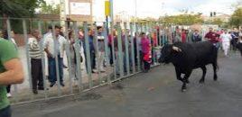 Fuenlabrada destina más de 94.000 euros para festejos taurinos en fiestas