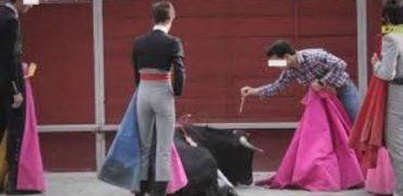 La ONU insta a España a alejar a niños, niñas y adolescentes de la violencia de la tauromaquia.
