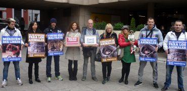 Fin de subvenciones públicas a los circos con animales salvajes