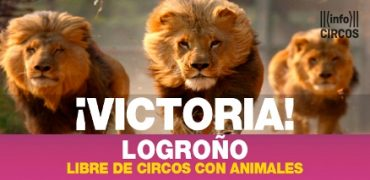 logroño libre de circos con animales
