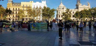 Éxito en la concentración celebrada en Valencia por TIMPLE