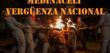 Este año Medinaceli (Soria) no aterrorizará a un animal con el fuego