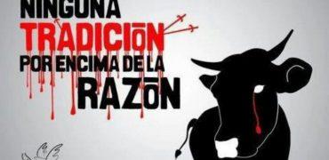 Cientos de organizaciones de 15 países piden a Movistar que no transmita corridas a puerta cerrada y cierre el canal Toro TV