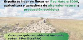 ANDA se dirige a los eurodiputados españoles pidiendo su apoyo para una Política Agraria Común que proteja a los animales