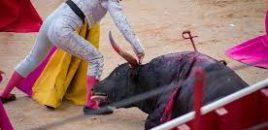 Primer San Fermín sin sangre ni muerte