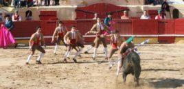 Portugal no quiere que se subvencione el maltrato animal