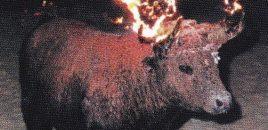 España: el imperio de la barbarie