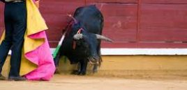 Suspendida la Feria Taurina del Pilar en Zaragoza por las restricciones del covid