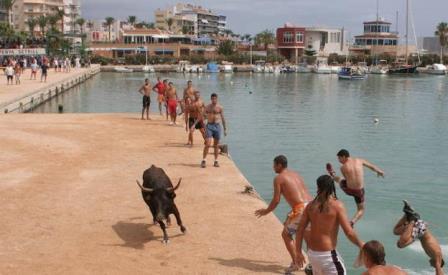 Una vaquilla cae al agua y muere en el puerto de Benicarló durante los Bous a la Mar.