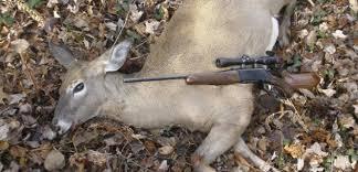 Colombia se suma a la lista de países donde la caza está prohibida