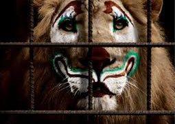 El último rugido del circo
