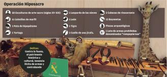 Incautadas 50 tallas de arte y 150 animales disecados en riesgo de extinción en Pontevedra