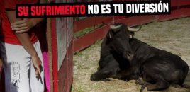 Treinta y cuatro municipios de Madrid tendrán ayudas para acoger novilladas