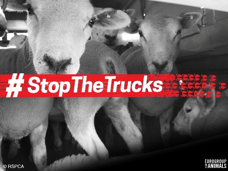 Eurogroup inicia la campaña Stop the trucks