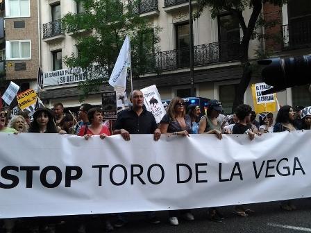ANDA se muestra escéptica ante la aprobación del decreto de Castilla y León que impide matar al Toro de la Vega