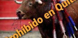 Se ha subido al Registro Oficial la ordenanza que prohíbe las corridas de toros y las peleas de gallos y perros en Quito (Ecuador)