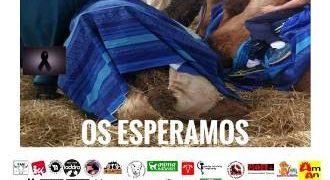 Manifestación celebrada en Alcalá de Henares, en recuerdo a Malagueño, el camello que murió en el Mercado Cervantino.