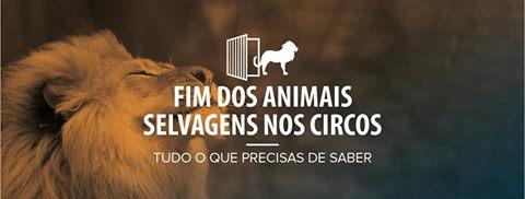 ¡¡PORTUGAL PROHÍBE LOS CIRCOS CON ANIMALES!!