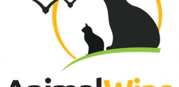 Animal Wins