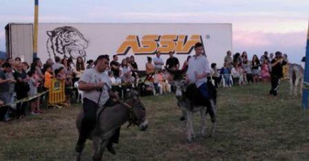 Los defensores de los animales piden abolir las carreras de burros por maltrato emocional y físico.