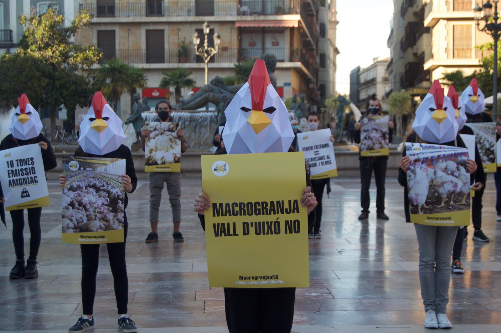 Ecologistas se concentran en Valencia contra la Macrogranja de la Vall d'Uixó - andacentral