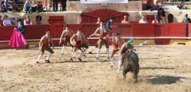 Portugal prohibirá por ley que los menores asistan a los toros