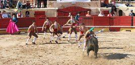 Portugal prohíbe la entrada a las corridas de toros a menores de 16 años