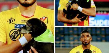 Rumanía presentará perros en adopción en los partidos de fútbol
