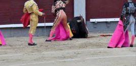 Festival benéfico de Joaquín Galdós suspendido por presiones de asociaciones animalistas en Lima (Perú)