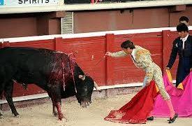 Twitter censura el perfil de la sección de toros de EL MUNDO al considerar que contiene «violencia gráfica»