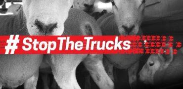 Eurogroup inicia la campaña Stop the trucks